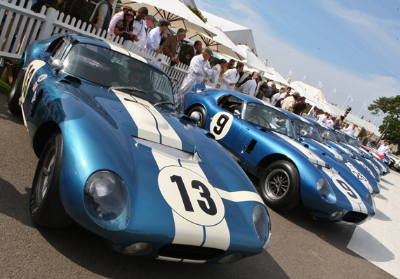 Cobra Daytona line up by Jonathan Sharp.